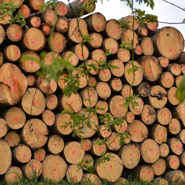 ویلای چوبی کوهستانی