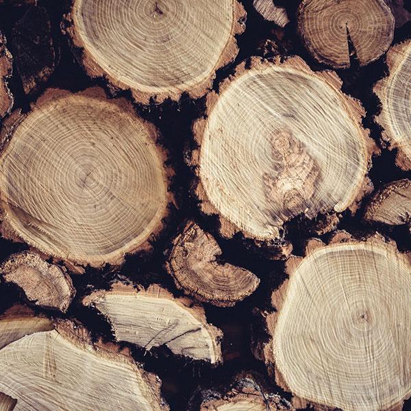 دسته بندی چوب ها را با توجه به چه نکاتی انجام میدهند؟